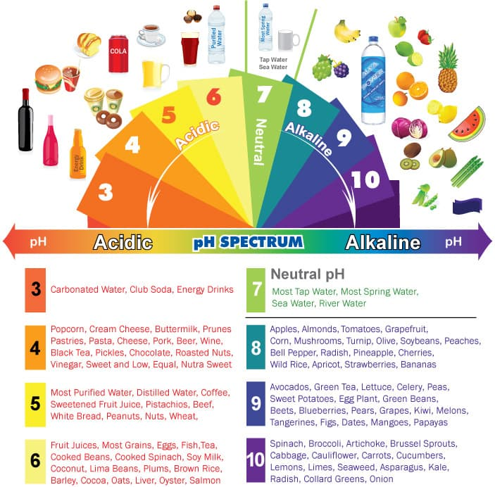 Alkaline  Acidic Foods Chart The Ph Spectrum  Sdarc Wellness